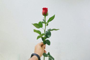 外国人に贈るなら?おすすめギフトベスト3 ~海外現地編~